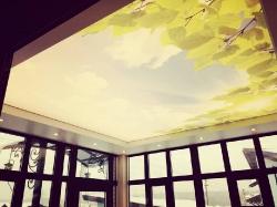 Натяжные потолки_3